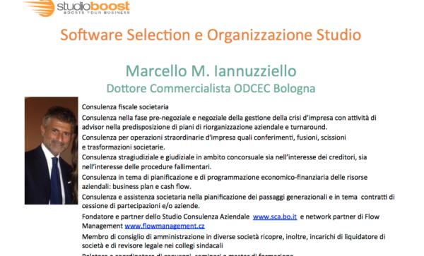 iannuzziello-sw-selection
